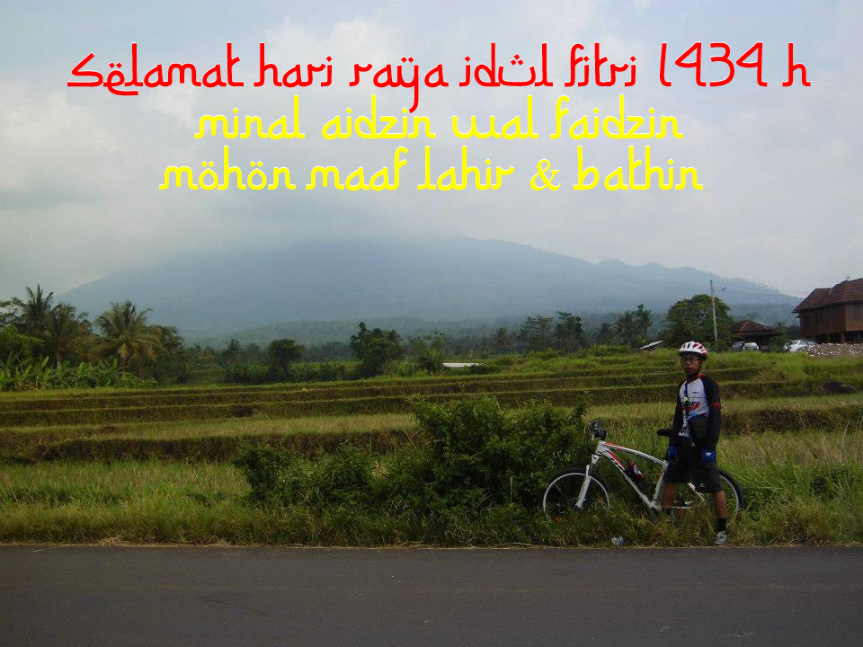 gowes id